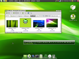 linuxMint8 March2010 by cyborg