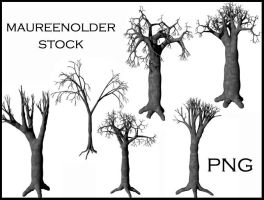 STOCK PNG tree by MaureenOlder