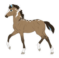 N3706 Padro Foal Design by casinuba
