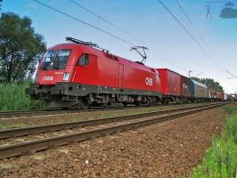 1116 025-6 w. freight on 2008 by morpheus880223