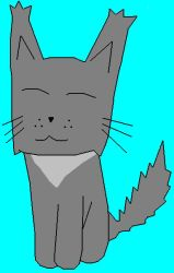 Fluffy Gray Cat by Cat444