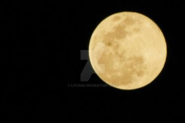 Supermoon 2013 by lycans