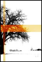 Tree in the snow with Orange by torchdesigns