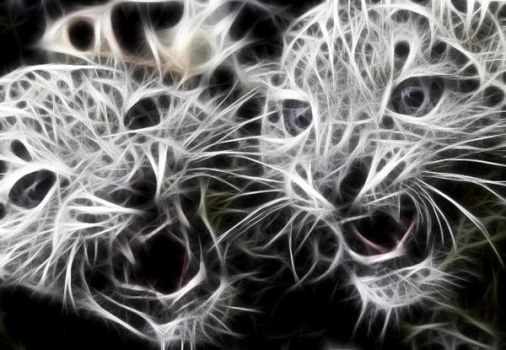 baby leopard ghosts by emreinanc