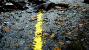 Thin, yellow line by grotgier