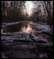 A Cold Evening by Vitskog