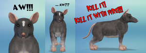 Alone in the World is a Little Rat Dog by Reitanna-Seishin