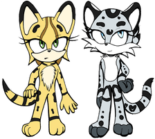 Introducing Sonic Cat Trash by OfficialSassy