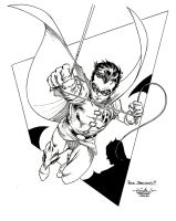 Robin - Ch'tite Bulle 2009 by SpiderGuile