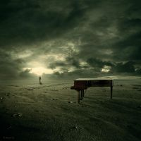 The musician by theflickerees