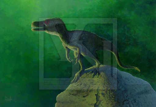 Dreams of tomorrow - Staurikosaurus pricei by T-PEKC