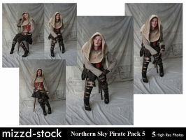 Northern Sky Pirate Pack 4 by mizzd-stock