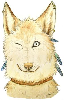 Anthro wolfie for Tracon by Celea