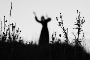 The souls of a wilted meadow by NataliaDrepina
