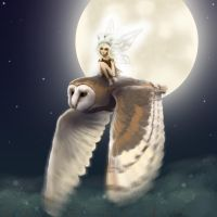 Moon touched wings by LeeAnneKortus