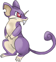 rattata lost file