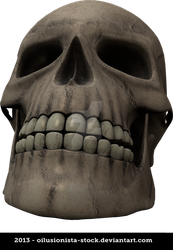 Skull cutout PNG by oilusionista-stock