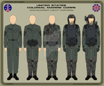 USCMC M56 Gunner Uniform_Light