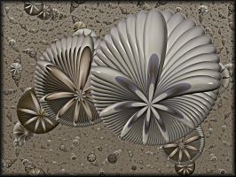 Sea Urchins in the Sand by Rozrr