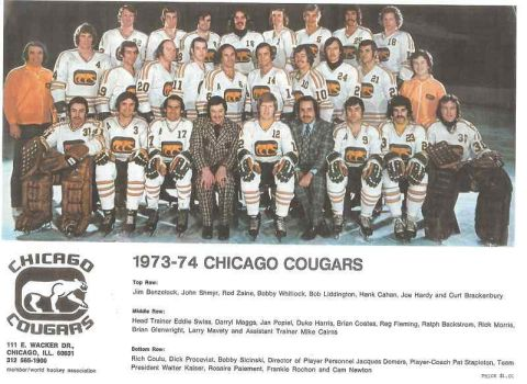 1973-74 Chicago Cougars 2 by danwind