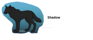 Shadow by stormwolves