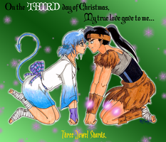 :+: 3 Day of Christmas 08 :+: by zoro4me3