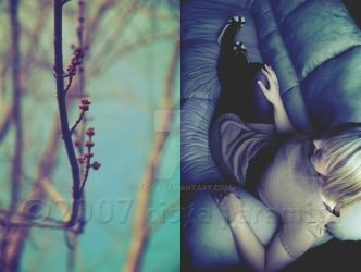if winter ends by cisya