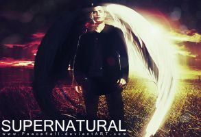 SUPERNATURAL dean wings by Peace4all