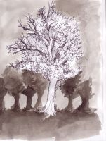 A Tree by Inaimathi