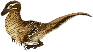 Velociraptor mongoliensis by wingedwolf94