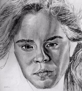 Unfinished Hermione by Rogo2002