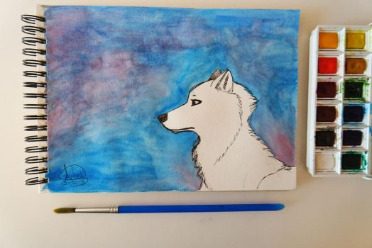 some watercolour wolf art by MariannaNight