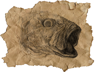 Fish Head by Lameniet