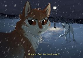 Hurry up Owl, we have to go! by OwlCoat