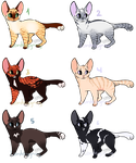 Feline adoptables 14 OPEN by LordEggnog