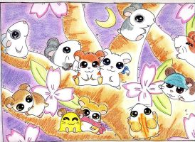 Hamtaro and Friends... by Sheep-in-the-moon