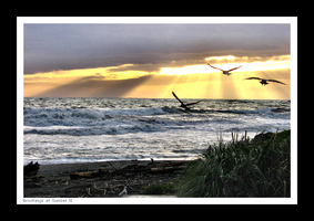 Brookings at Sunset II by YellowEleven
