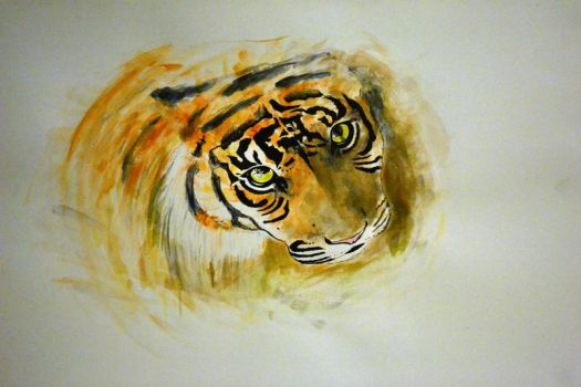tiger. by Dontwannabemyself