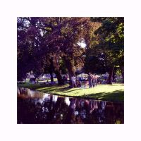 Vondelpark IV by frienkink