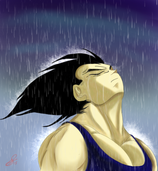 Vegeta in the rain by hoffy69