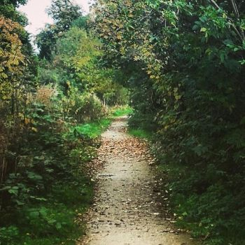 A path well traveled by AutumnalEssence