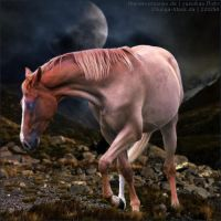 Horse Avatar ~ Lunar Eclipse by Liberty-Designs