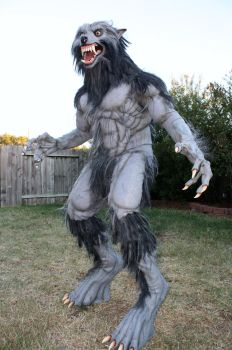 Werewolf Costume 2010-2 by CReeves76