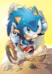 Sonic the Hedgehog 218 Cover by herms85