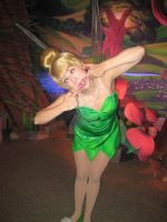 Silly Faces: Tinker Bell by GarnetMelody