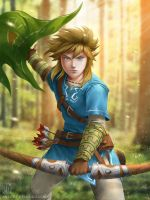 Zelda Wii U: Link by EternaLegend