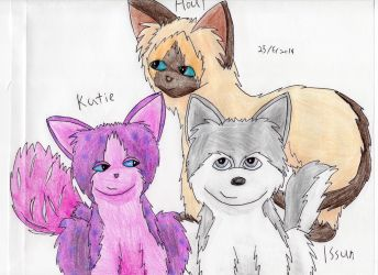 The Three: Issun, Houl, and Katie by OfficialSassy