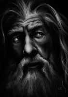 Gandalf the Grey by Caoranach
