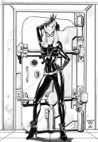 Catwoman by HedwinZ89