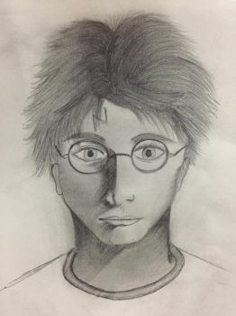 Harry Potter! by Hussu24893